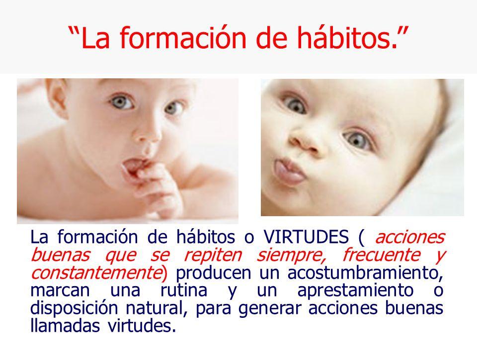 La formación de hábitos.