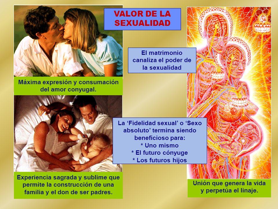 VALOR DE LA SEXUALIDAD El matrimonio canaliza el poder de la sexualidad. Máxima expresión y consumación.