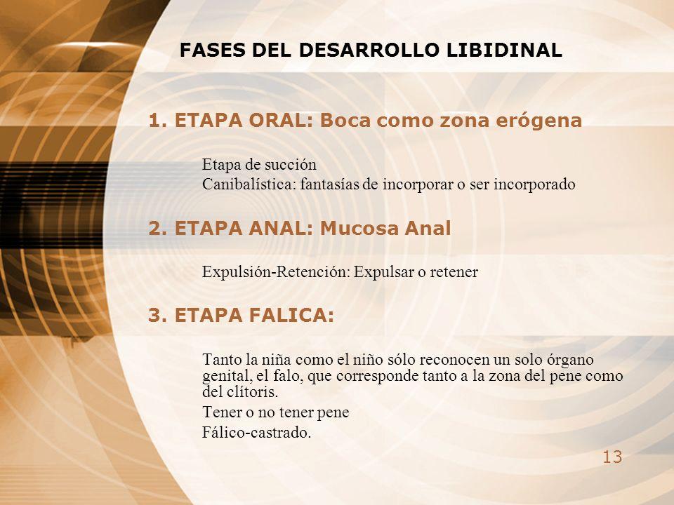 FASES DEL DESARROLLO LIBIDINAL