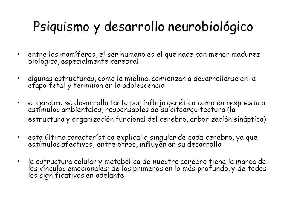 Psiquismo y desarrollo neurobiológico