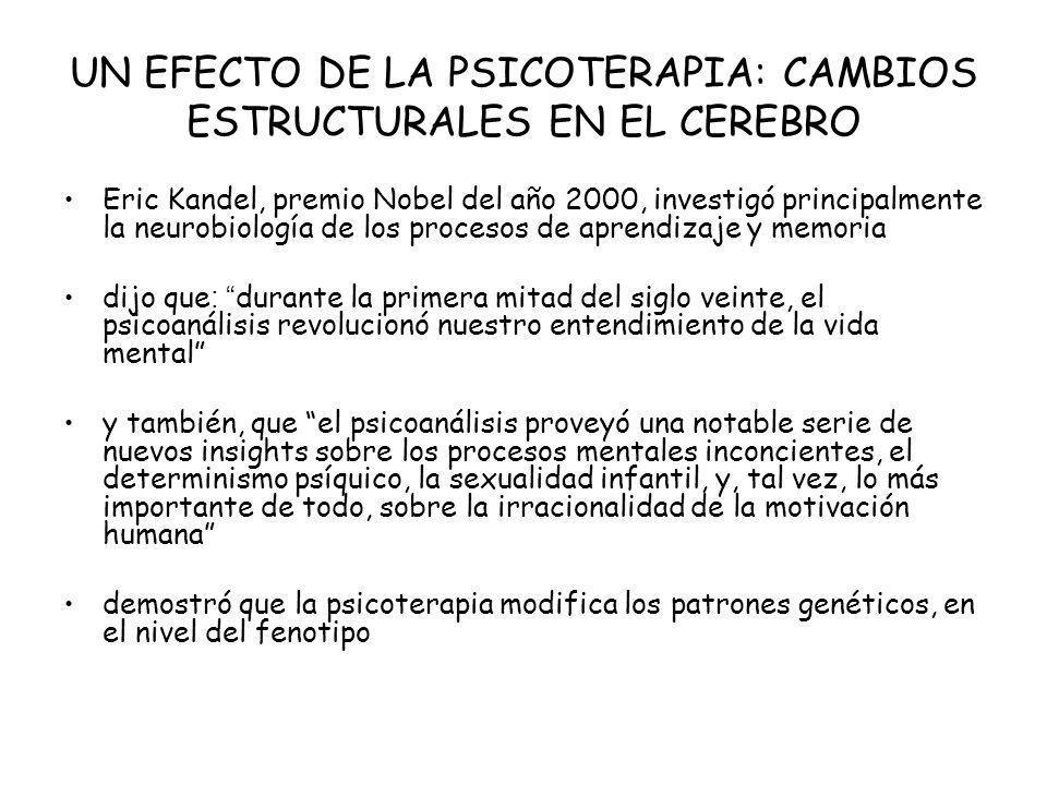 UN EFECTO DE LA PSICOTERAPIA: CAMBIOS ESTRUCTURALES EN EL CEREBRO
