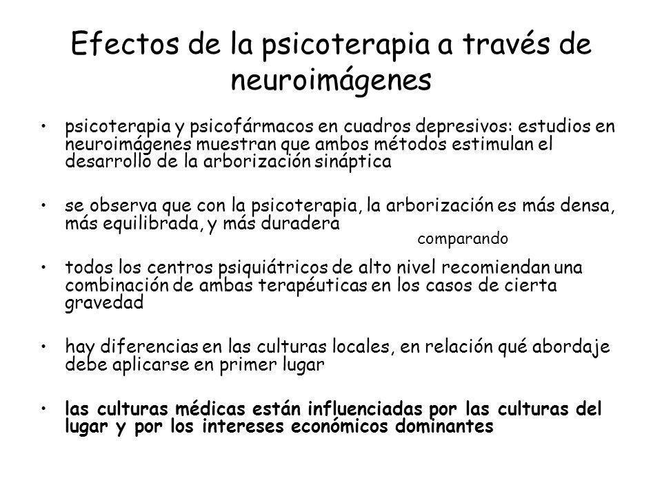 Efectos de la psicoterapia a través de neuroimágenes