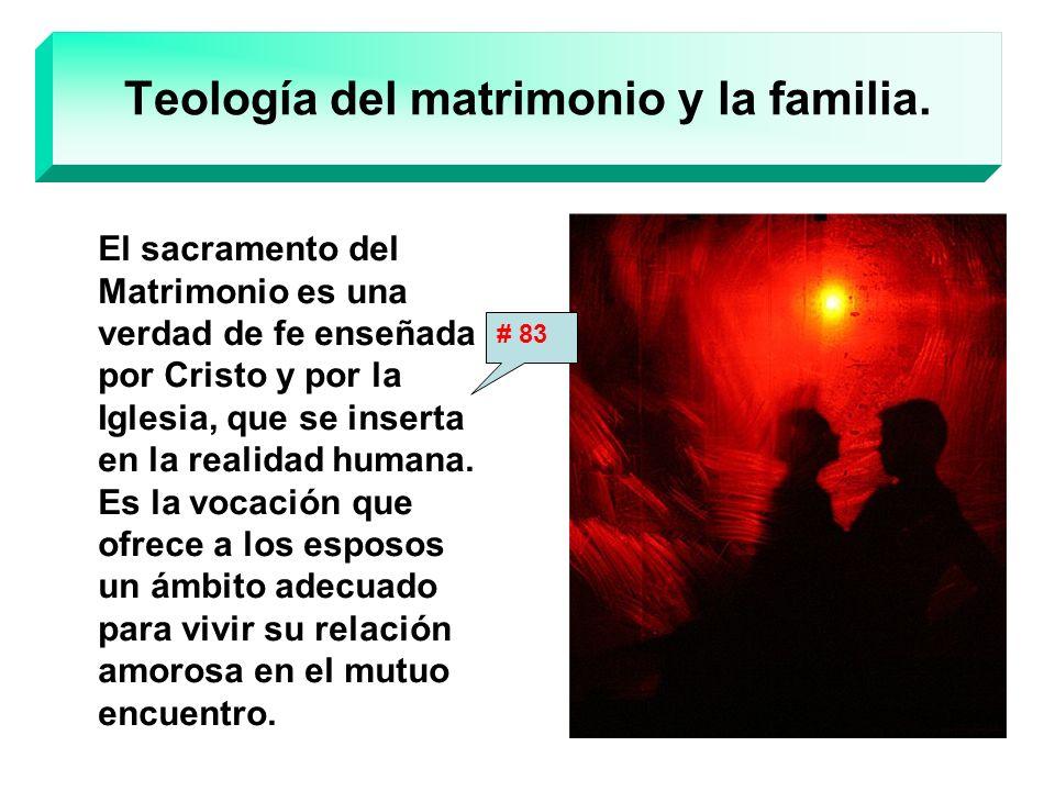 Teología del matrimonio y la familia.