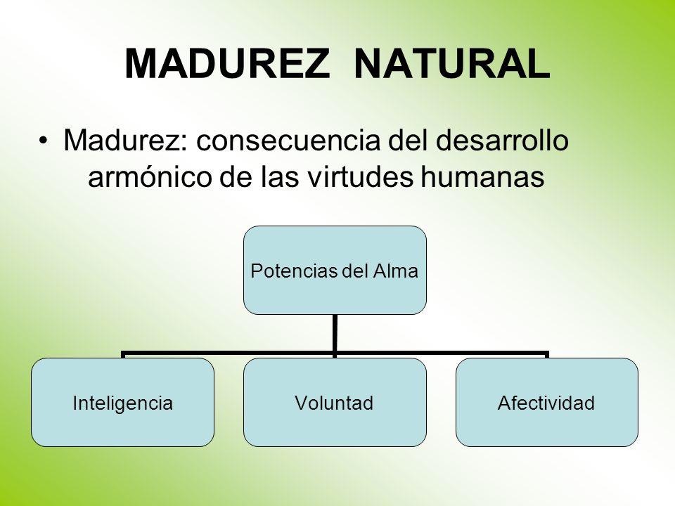 Madurez: consecuencia del desarrollo armónico de las virtudes humanas
