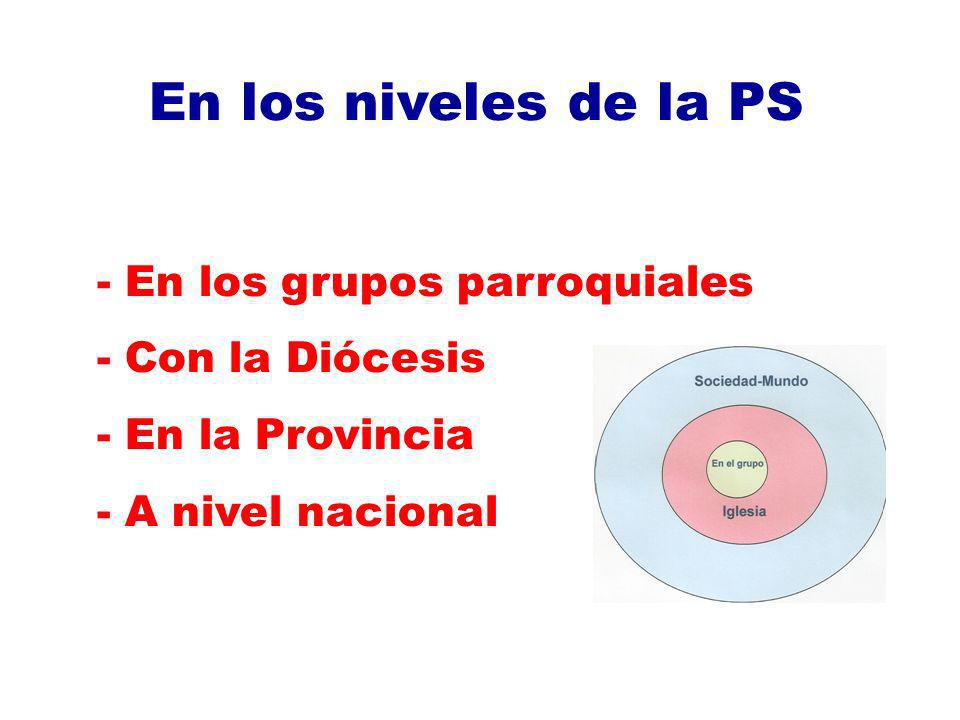 En los niveles de la PS En los grupos parroquiales Con la Diócesis