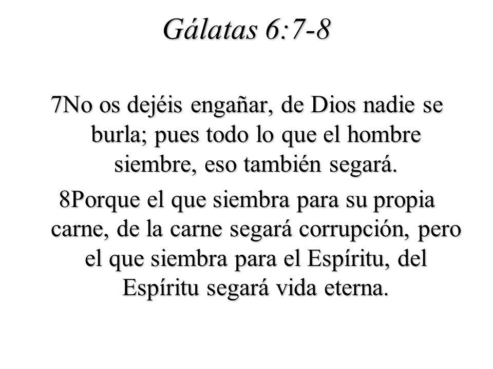 Gálatas 6:7-8