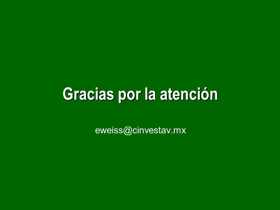 Gracias por la atención eweiss@cinvestav.mx