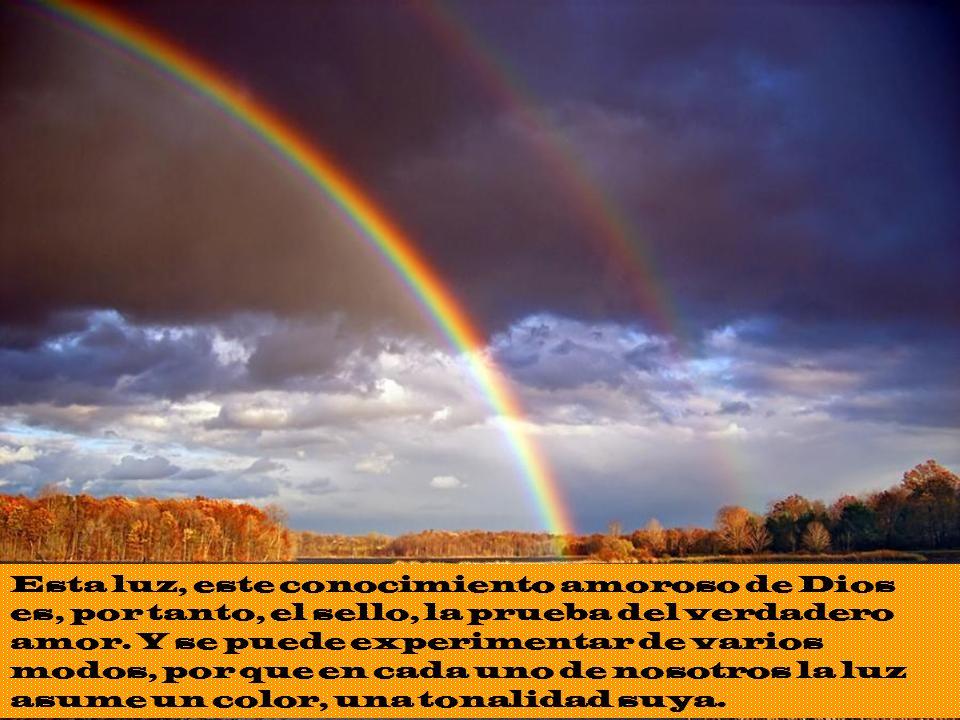 Esta luz, este conocimiento amoroso de Dios es, por tanto, el sello, la prueba del verdadero amor.