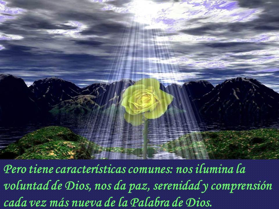 Pero tiene características comunes: nos ilumina la voluntad de Dios, nos da paz, serenidad y comprensión cada vez más nueva de la Palabra de Dios.