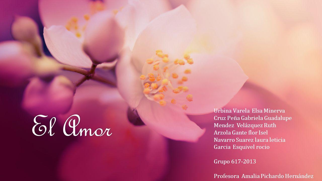 El Amor Urbina Varela Elsa Minerva Cruz Peña Gabriela Guadalupe