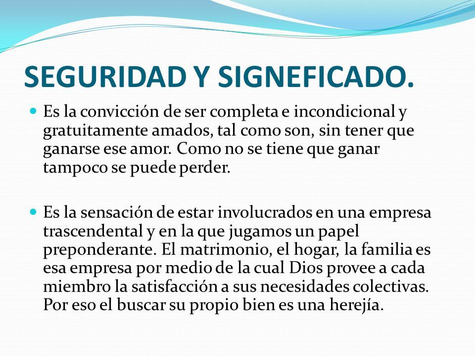 SEGURIDAD Y SIGNEFICADO.
