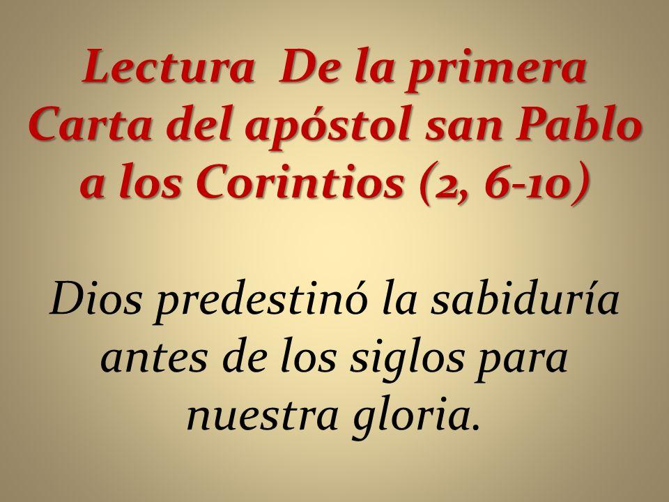 Dios predestinó la sabiduría antes de los siglos para nuestra gloria.