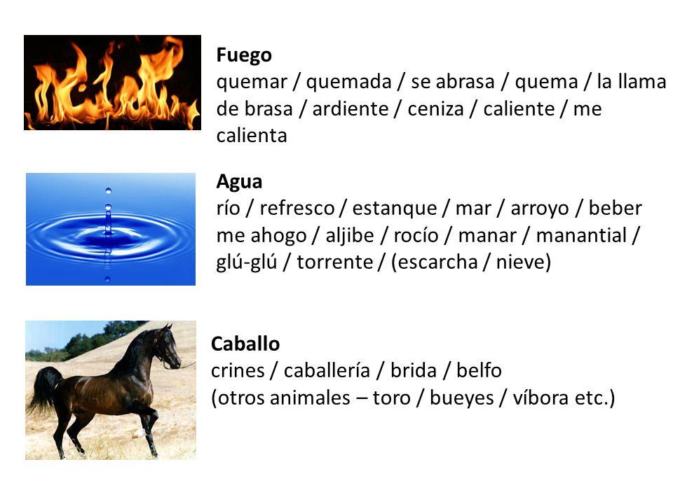 Fuego quemar / quemada / se abrasa / quema / la llama de brasa / ardiente / ceniza / caliente / me calienta