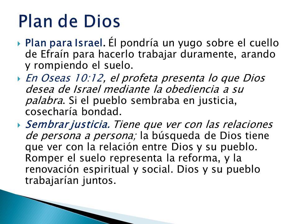 Plan de Dios Plan para Israel. Él pondría un yugo sobre el cuello de Efraín para hacerlo trabajar duramente, arando y rompiendo el suelo.