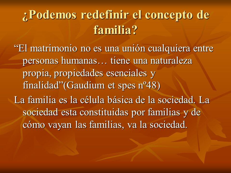 ¿Podemos redefinir el concepto de familia