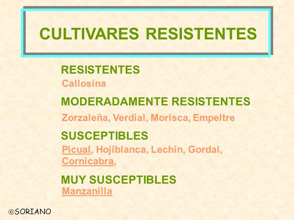 CULTIVARES RESISTENTES