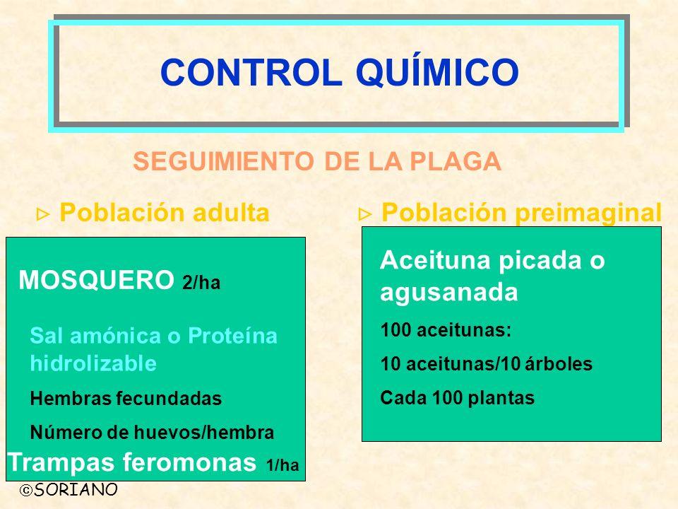 CONTROL QUÍMICO SEGUIMIENTO DE LA PLAGA  Población adulta