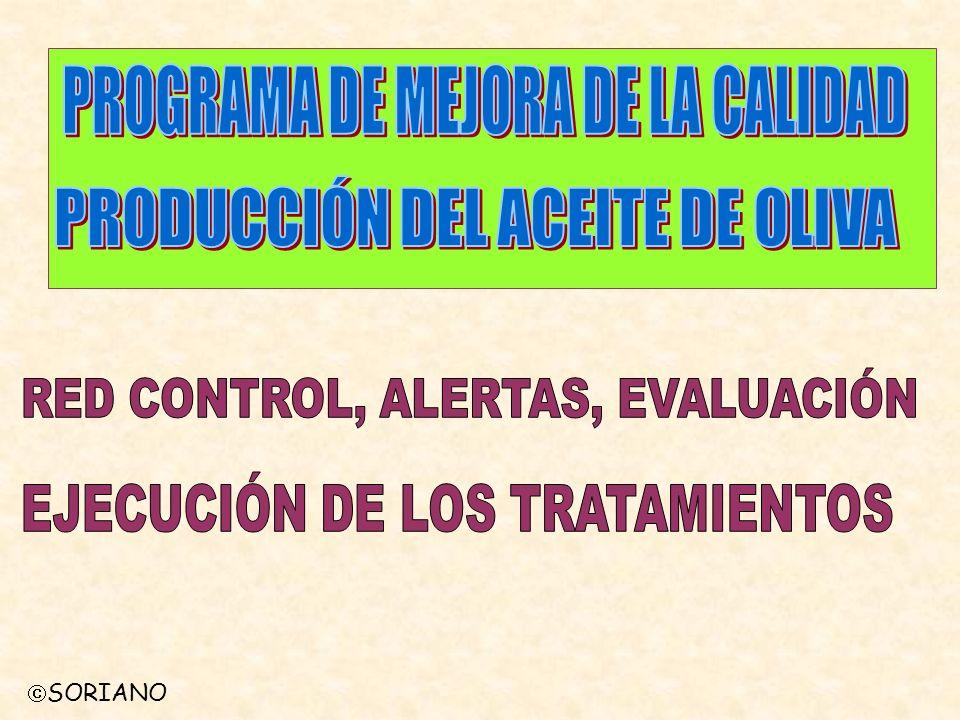 PROGRAMA DE MEJORA DE LA CALIDAD