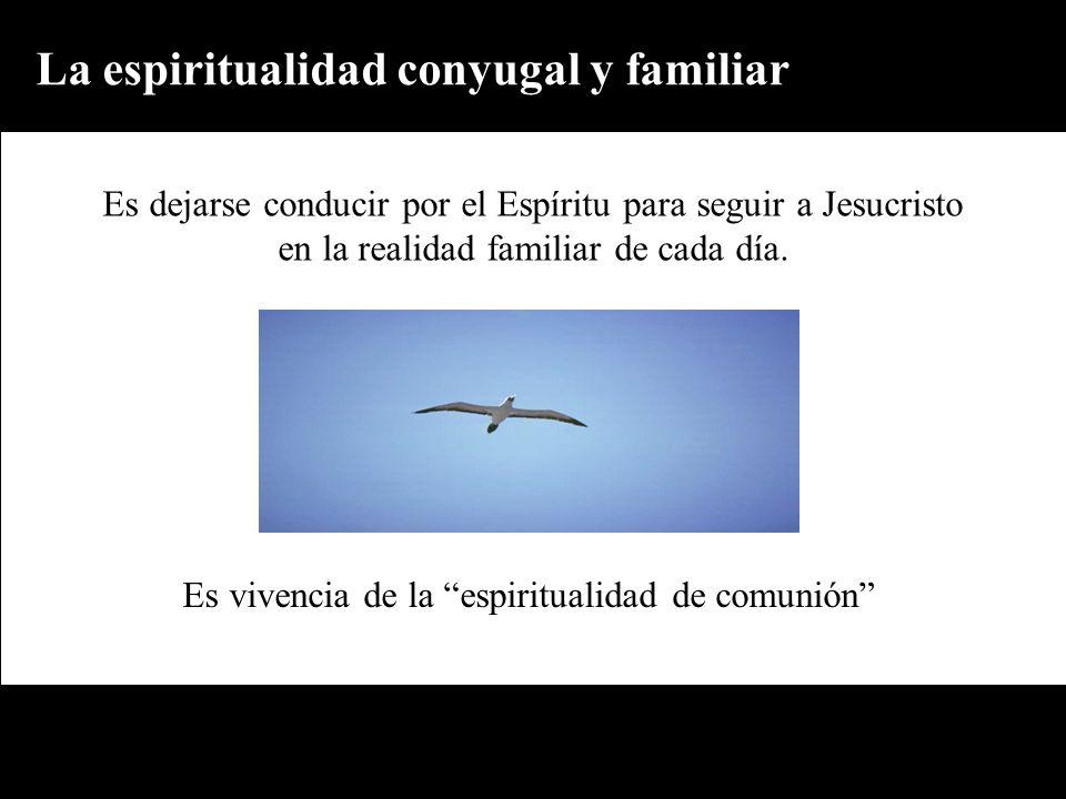 Es vivencia de la espiritualidad de comunión