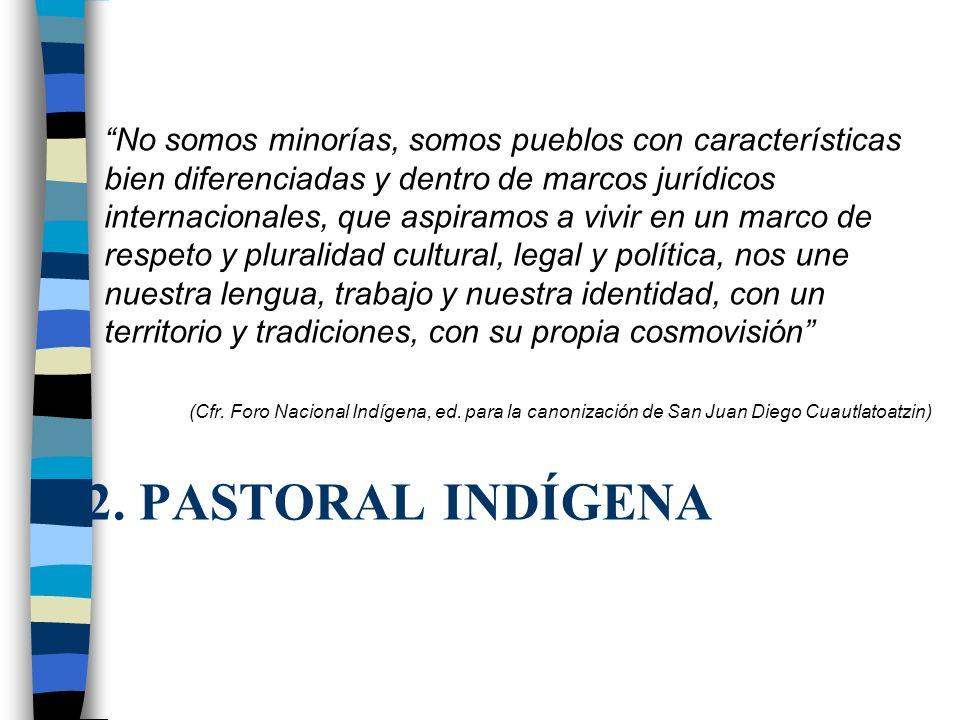 No somos minorías, somos pueblos con características bien diferenciadas y dentro de marcos jurídicos internacionales, que aspiramos a vivir en un marco de respeto y pluralidad cultural, legal y política, nos une nuestra lengua, trabajo y nuestra identidad, con un territorio y tradiciones, con su propia cosmovisión