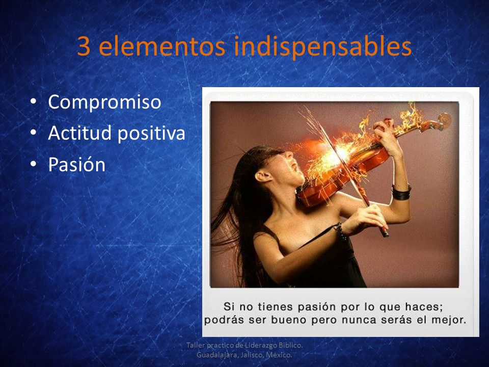 3 elementos indispensables