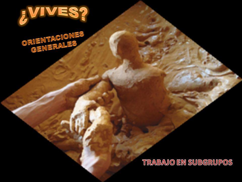 ¿VIVES ORIENTACIONES GENERALES TRABAJO EN SUBGRUPOS