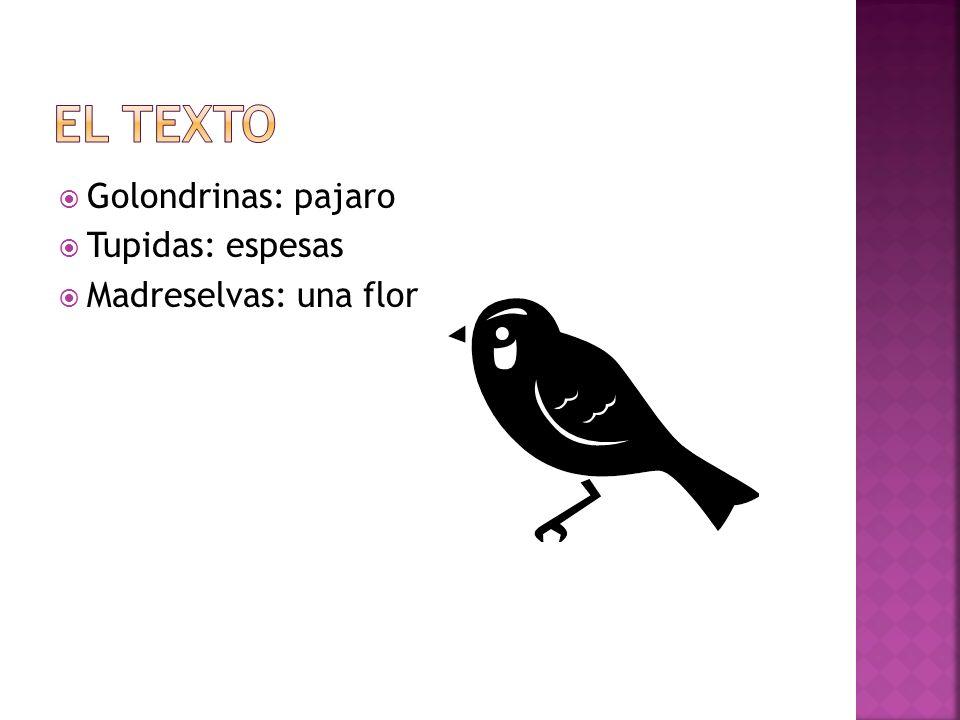 El texto Golondrinas: pajaro Tupidas: espesas Madreselvas: una flor