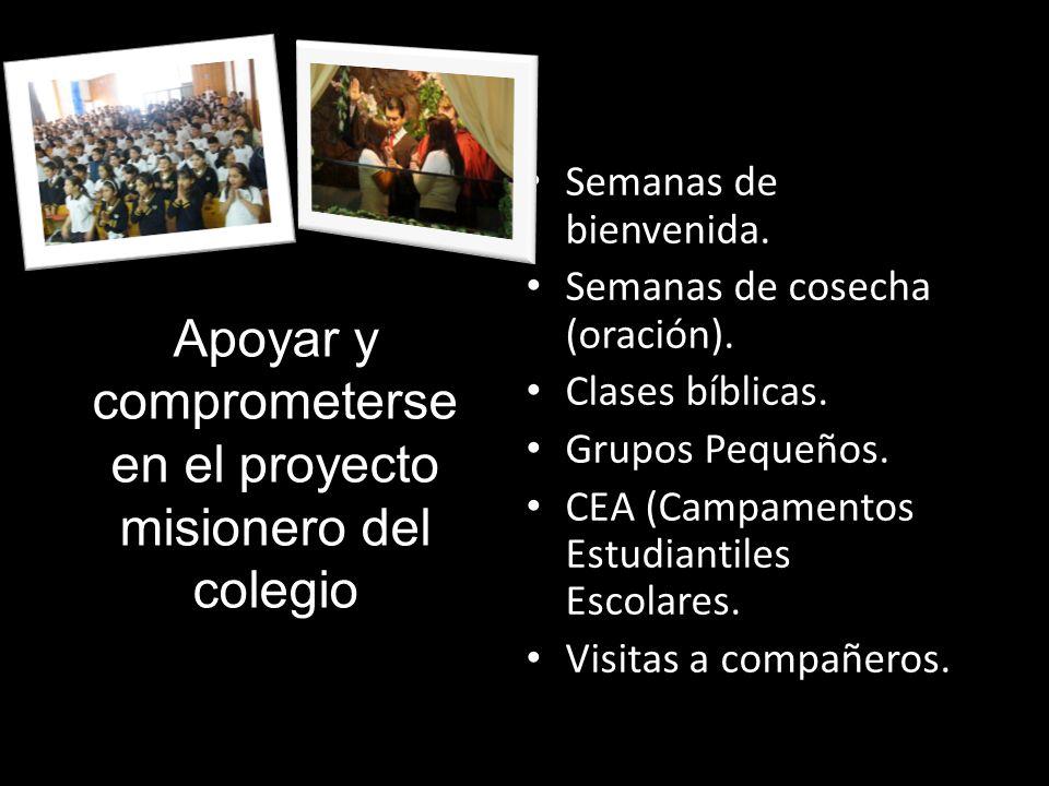 Apoyar y comprometerse en el proyecto misionero del colegio