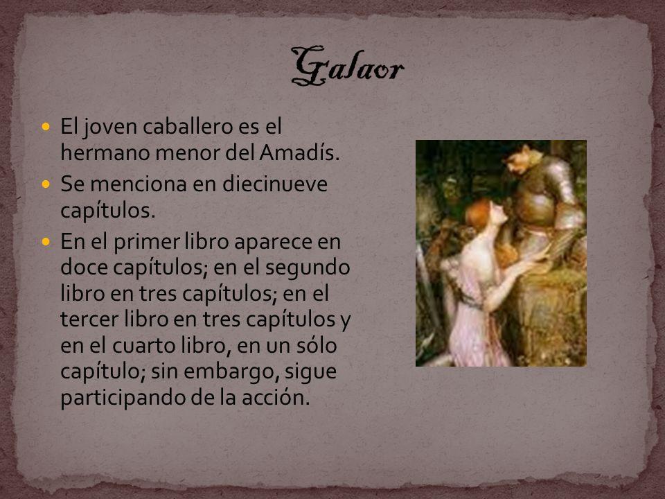 Galaor El joven caballero es el hermano menor del Amadís.