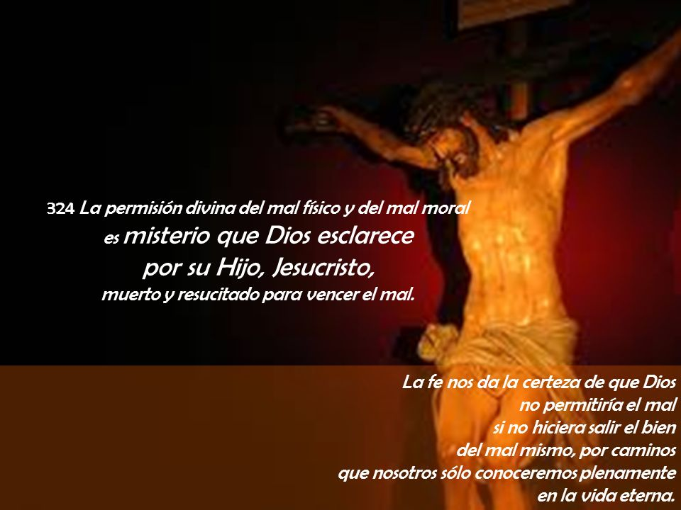 324 La permisión divina del mal físico y del mal moral