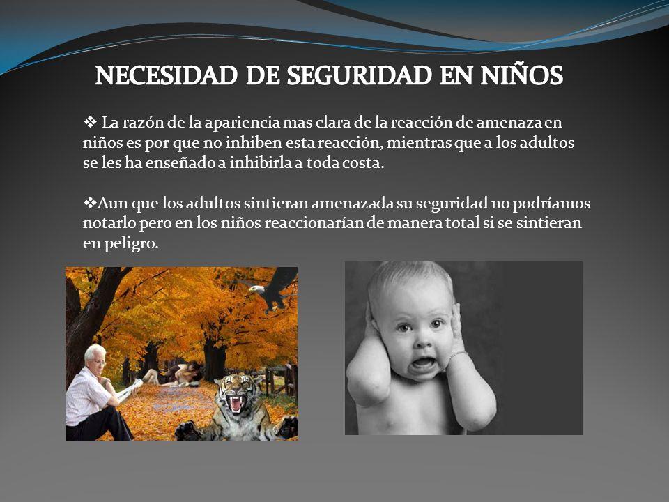 NECESIDAD DE SEGURIDAD EN NIÑOS