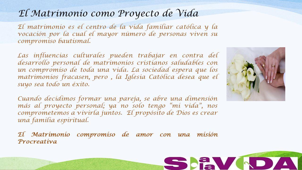Matrimonio Y Familia En El Proyecto De Dios : Campaña celebrando la vida ppt video online descargar