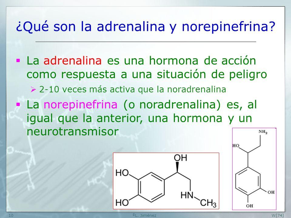 ¿Qué son la adrenalina y norepinefrina