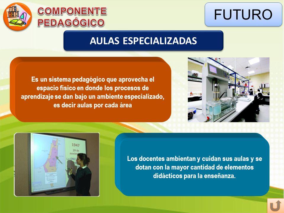 FUTURO AULAS ESPECIALIZADAS COMPONENTE PEDAGÓGICO