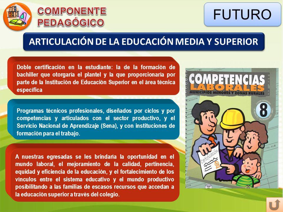 ARTICULACIÓN DE LA EDUCACIÓN MEDIA Y SUPERIOR
