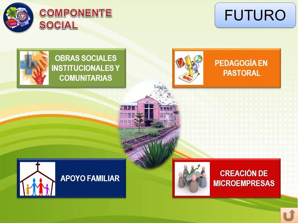 FUTURO COMPONENTE SOCIAL OBRAS SOCIALES INSTITUCIONALES Y COMUNITARIAS