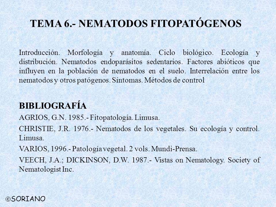 TEMA 6.- NEMATODOS FITOPATÓGENOS