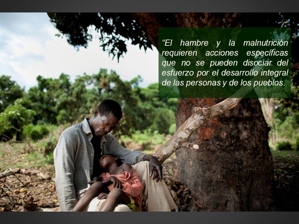 El hambre y la malnutrición requieren acciones específicas que no se pueden disociar del esfuerzo por el desarrollo integral de las personas y de los pueblos.
