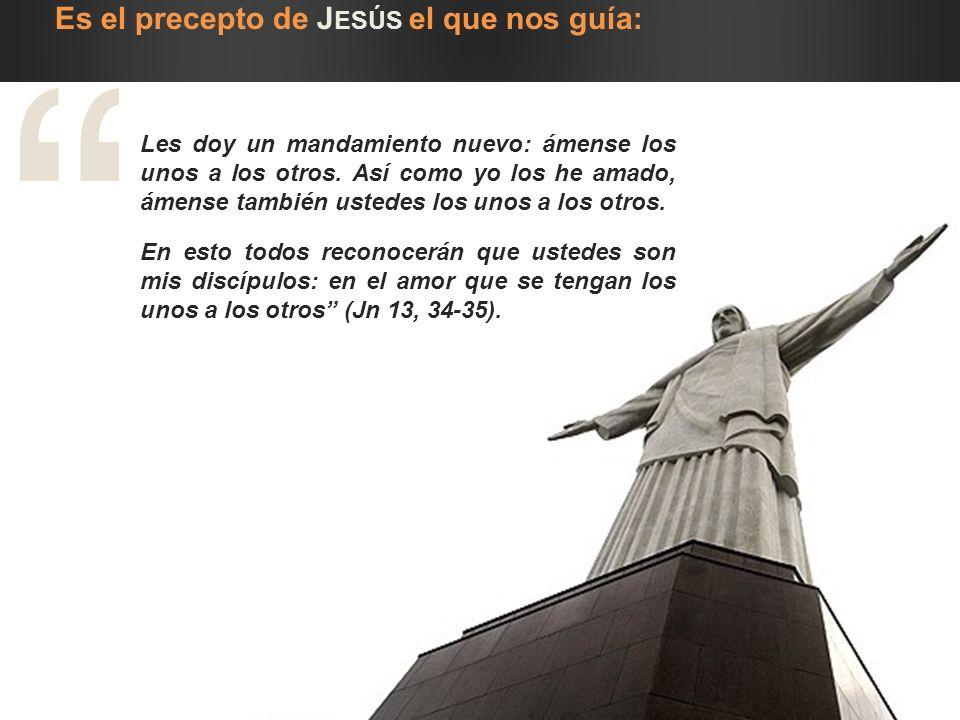 Es el precepto de Jesús el que nos guía: