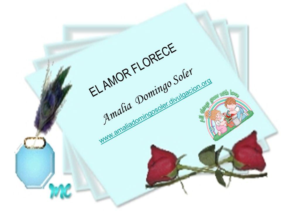 EL AMOR FLORECE Amalia Domingo Soler