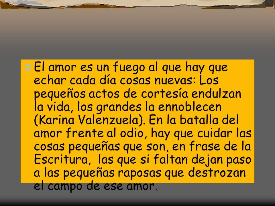 El amor es un fuego al que hay que echar cada día cosas nuevas: Los pequeños actos de cortesía endulzan la vida, los grandes la ennoblecen (Karina Valenzuela).