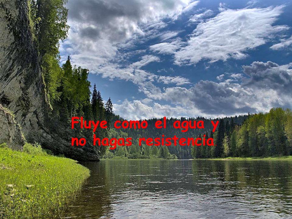 Fluye como el agua y no hagas resistencia.