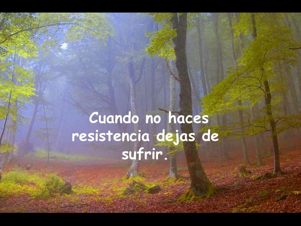 Cuando no haces resistencia dejas de sufrir.