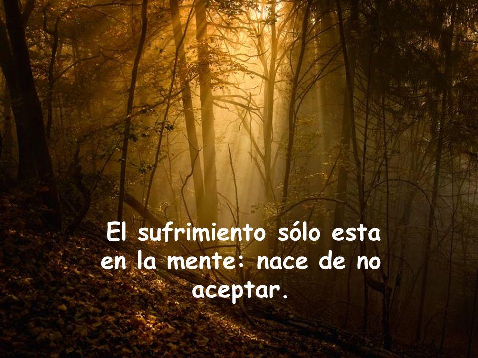 El sufrimiento sólo esta en la mente: nace de no aceptar.