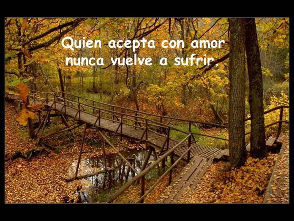 Quien acepta con amor nunca vuelve a sufrir.