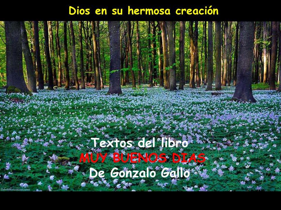 Textos del libro MUY BUENOS DIAS De Gonzalo Gallo