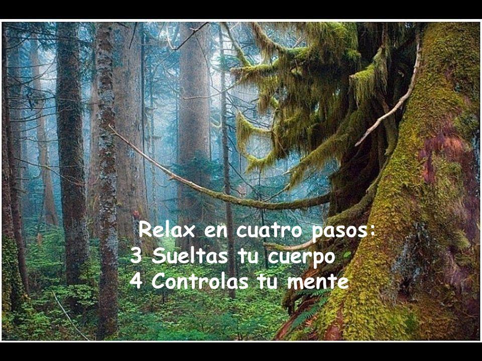 Relax en cuatro pasos: 3 Sueltas tu cuerpo 4 Controlas tu mente