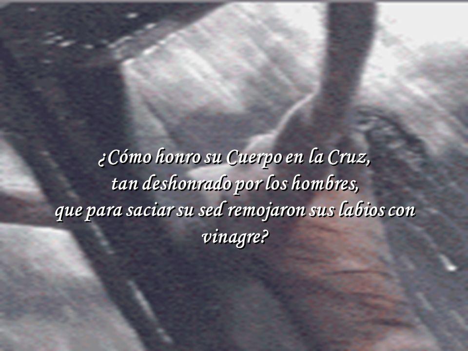 ¿Cómo honro su Cuerpo en la Cruz, tan deshonrado por los hombres,