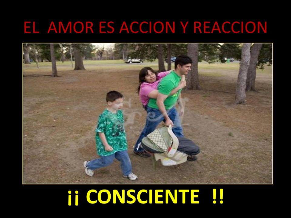 EL AMOR ES ACCION Y REACCION