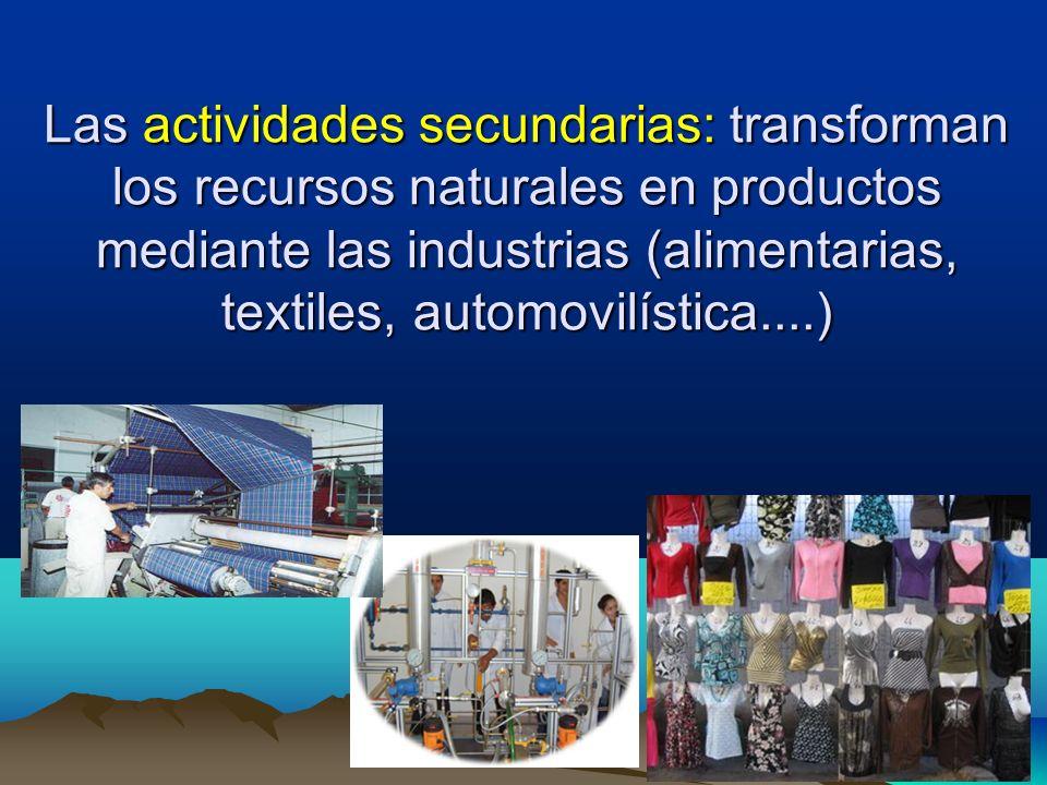 Las actividades secundarias: transforman los recursos naturales en productos mediante las industrias (alimentarias, textiles, automovilística....)